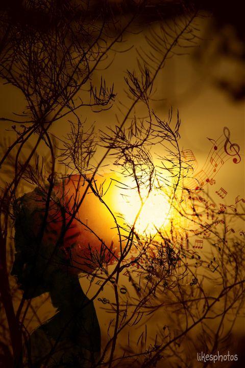 music,emotion,love,summerstory,sunset