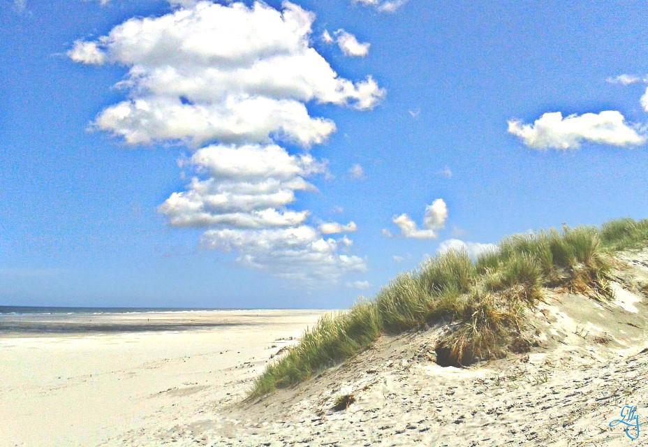Enough #space  #beach #HDR #summer #blue #clouds
