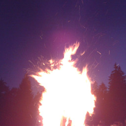 night nature fire