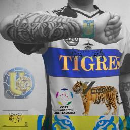 tigres campeon copalibertadores mexico uanl