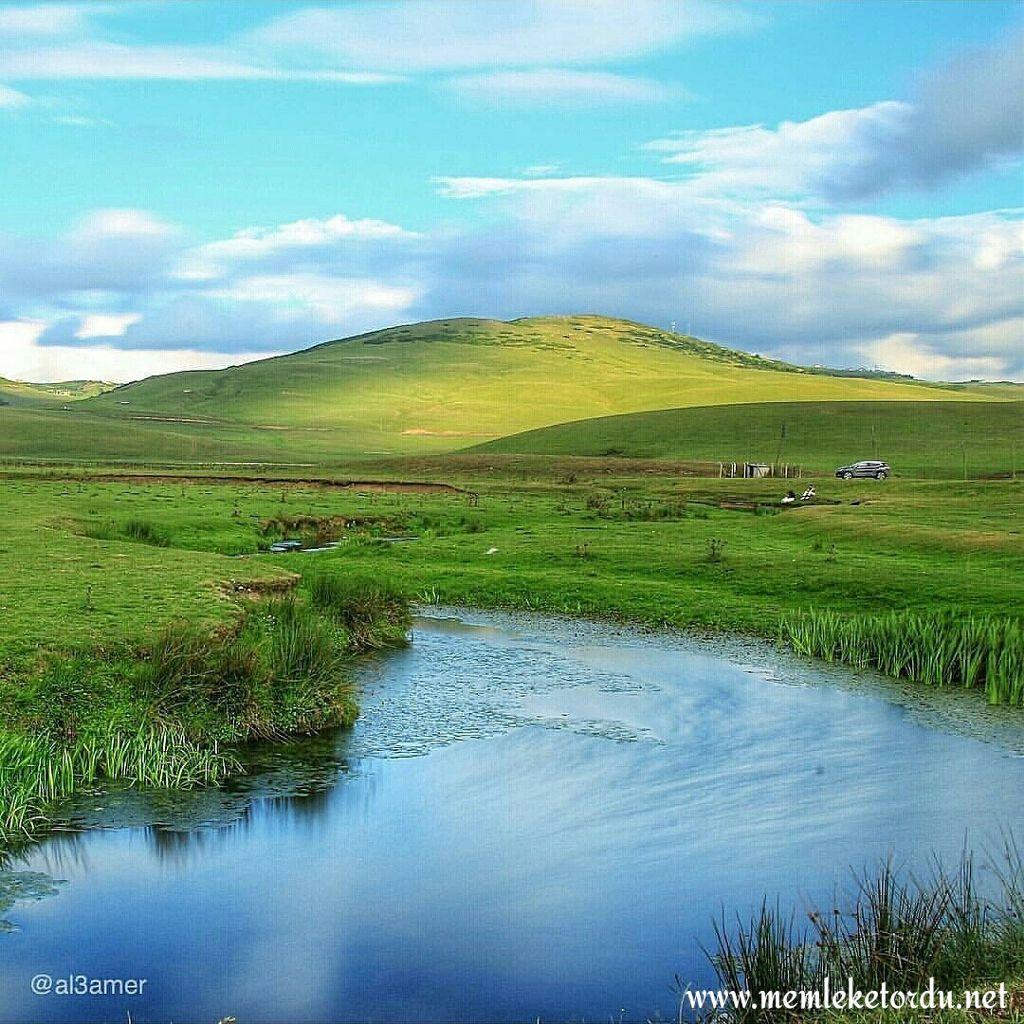 Cennetten bir köşe... #perşembeyaylası #aybastı #ordu #karadeniz #blacksea #turkey #travel #nature #yayla #amazing