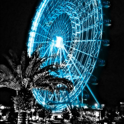 orlandoeye purple2blue walker gdaddcolor