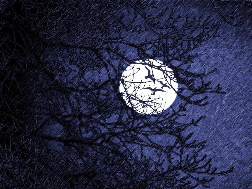 #lines #moon #night