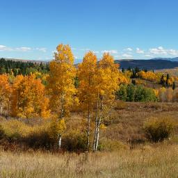 nature photography fallcolors rockymountains fall