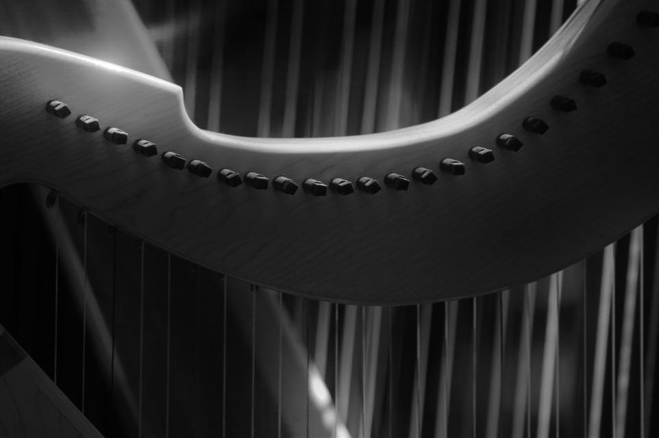 The Harp  #instrument  #music #lines #blackandwhite  #elegant #pretty #kc #kcirishfest15 #travel #kansascity  #photography  #artistic