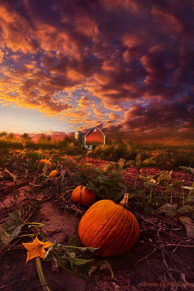 """""""Echos You Can See"""" - Horizons by Phil Koch.   #nature #farming #barn #peace #sky #autumn #fall #landscape #colorful #pumpkins #halloween"""